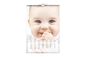 Imagen de Calendario Pared 13 pág. 29x42